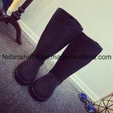 La nuova neve di arrivo dell'alto tubo caric il sistemaare i caricamenti del sistema casuali delle calzature della ragazza
