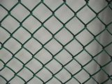 경쟁적인 Price 및 Excellent Quality Chain Link Fence