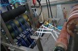 De normale Prijs van de Machine van Dyeing&Finishing van de Linten van Temperaturen Elastische