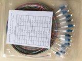 Treccia della fibra di LC di 12 memorie, treccia di fibra ottica su un lato di LC