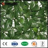 الصين صاحب مصنع [ب] طازجة اصطناعيّة خضراء خارجيّة جنيبات ورقة