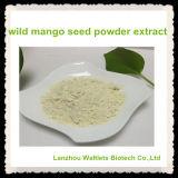 高品質の自然な野生マンゴのシードの粉のエキス