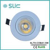 よい価格の熱く美しく、熱い販売LEDの天井灯中国製