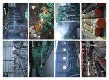 24 Pijp van het Staal van de duim ASTM A53 de Warmgewalste Naadloze