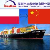 Transporte Fom Shenzhen/Shanghai do oceano de China a Gdansk de Poland