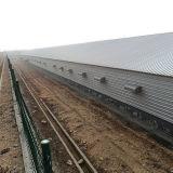 Geflügel Fram Aufbau von Qingdao China für einen Endservice