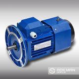 Motor de CA del arrabio (series Y2)