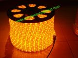 3 철사 ETL LED 네온 밧줄 빛을 점화하는 LED