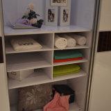 현대에게 침실 가구 미끄러지고는 또는 문호 개방 옷장 옷장 (공장 직접 공급)