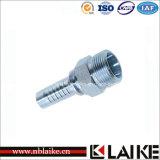 Installazione di tubo flessibile foggiata con uno stampo placcata zinco metrico di grado H.T del maschio 24 (10511)
