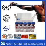 Bodybuilding 인간적인 성장 스테로이드 분말 Hg H 호르몬 Ig F