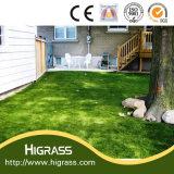 [بّ] محترف طبيعيّ يرتّب عشب لأنّ حديقة زخارف