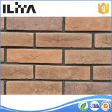 Mattonelle di pietra coltivate Manufactured del mattone per il rivestimento della parete (20001)