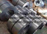 La calidad primera laminó la bobina de la hoja de acero (SPCC SPCD SPCE)