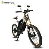 48V 1500W新しいデザインEバイク
