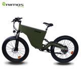 雪デザイン48V脂肪質の電気バイク