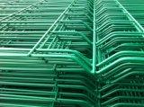 rete fissa della rete metallica 3D