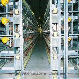 Huhn, das Rahmen-preiswertes automatisches Geflügel-Gerät für Verkauf anhebt