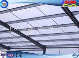 Struttura d'acciaio prefabbricata professionale per il workshop/magazzino (SSW-012)