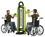 체조 공원 오락에 의하여 무능하게 하는 건축 Handicaped 옥외 적당 장비