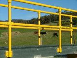 FRP GRP Handlauf des Zaun-FRP der Leitschiene-FRP mit rostfester Leistung