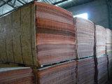 Pulchra Veneer Popular em India e em Indonésia Market