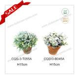 A sensação real plástica de H10-18cm floresce o tipo planta artificial plástica da planta