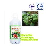 Изготовление органического удобрения аминокислота 100% водорастворимое для земледелия