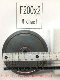 магнит F200X2 F200*2 поиска магнита неодимия магнита