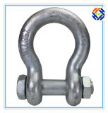 Pin D Shackle di Hardware Screw di sartiame da Drop Forged Parte