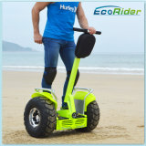 Electric Scooterの上の自己Balance Lithium Battery Electric Chariot 2 Wheel Standの中国Supplier