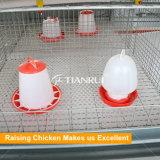 Sistema Breeding da gaiola da galinha de China para a venda