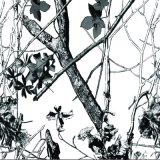 Idro eccellente della pellicola di stampa di trasferimento dell'acqua del camuffamento e dell'albero di qualità di larghezza di Tsautop 0.5m/1m che tuffa la pellicola P2576 di Hydrographics della pellicola