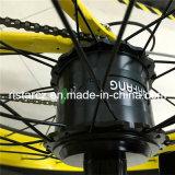 Weibliches fettes Reifen-elektrisches Fahrrad-heißer Verkauf (RSEB-506)