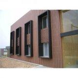 A melhor venda! ! ! ! ! ! ! ! ! Painel de parede plástico de madeira do composto WPC