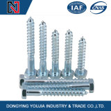 Ome Factory Price Hexagon et Square Head Wood Screw