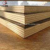 La película impermeable hizo frente a la madera contrachapada concreta de la forma