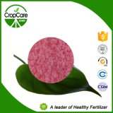 Fabricant hydrosoluble d'engrais de l'engrais de NPK (19-19-19+TE)