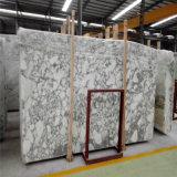 Azulejos Polished del mármol natural de la losa de la venta al por mayor de la ciudad de Yunfu, mármol blanco de Italia Arabescato