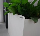 Pot van de Bloem van Garen van het Staal van Decoratie Vierkante 100% van de Tuin van het Bureau van Uispair de Moderne
