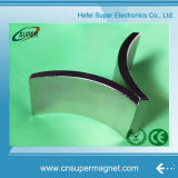 Magnete personalizzato di segmento dell'arco del neodimio della Cina