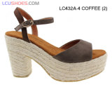 Gli alti sandali della cinghia della caviglia della piattaforma di Raynal incuneano le donne dell'alto tallone