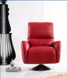 Recliner-Arm-Stuhl (737#)