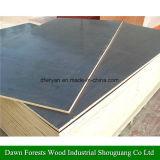 合板4つの8つのFTフィルムの表面/海洋の合板の合板または構築の合板