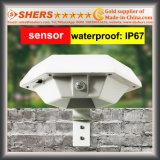 Luz solar del sensor de movimiento con 6 LED para el jardín (SH-2620)