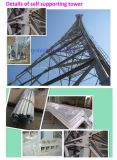長い生命時間高品質GSMのマイクロウェーブアンテナ電気通信タワー