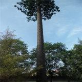 テレコミュニケーションのためのごまかされた海藻ナツメヤシの木タワーかBionicヤシの木