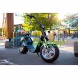 Ecorider 2のシートの1つの年の保証が付いている電気スクーターモーター1000W電気スクーター