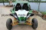 200cc에 의하여 사람을 배치되는 녹색 성숙한 Gokart