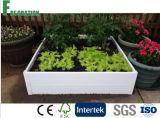 美しい家庭菜園-黒いWPCによって上げられるベッドプランター
